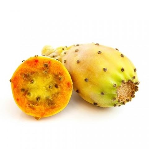 Кактус фрукт фото