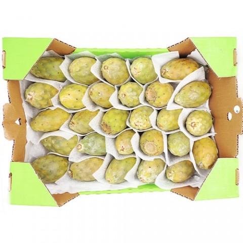 Кактус фрукт (в ящиках) фото